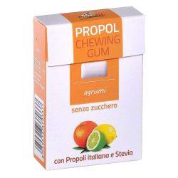 Propolis chewing gum (Propolgum), sugar-free, BIO, citrus fruits - 25g