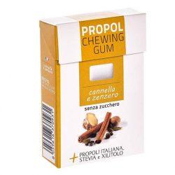 Propolis chewing gum (Propolgum), sugar-free, BIO, cinammon-ginger - 25g