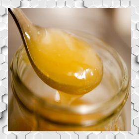 Royal Jelly in Honey