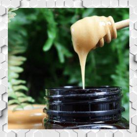 Manuka Honey with Herbs